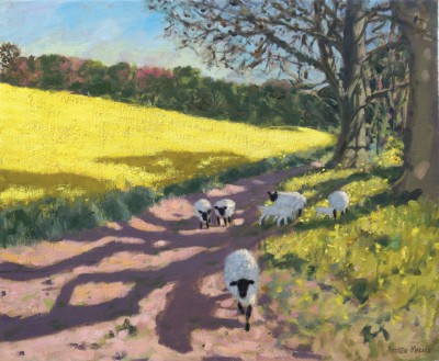 Modern Artist Andrew MACARA  - Yellow Field and Sheep