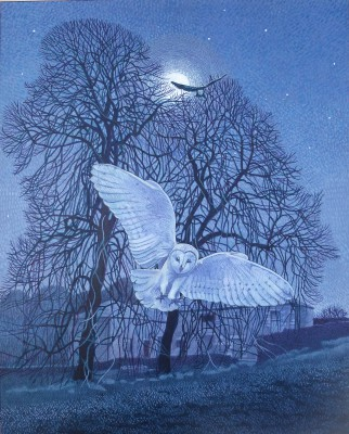 Modern Artist Annie OVENDEN - Owls in the Night
