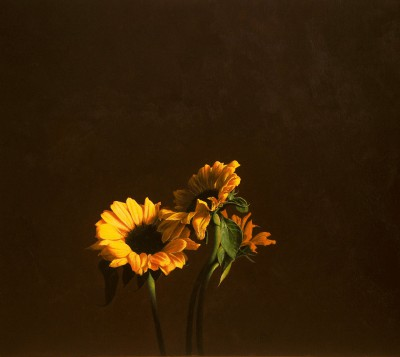 Modern Artist David GLEESON - Sunflowers