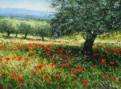 Jeremy BARLOW - Olive Tree with Poppies
