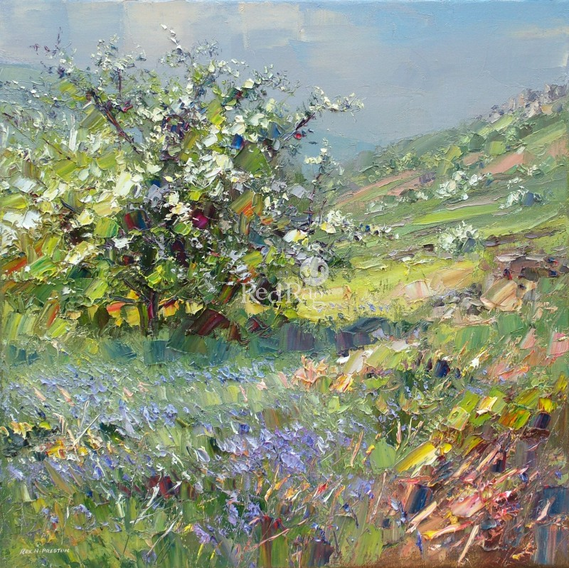 Rex PRESTON - Mayblossom and Bluebells, Curbar Edge, Derbyshire